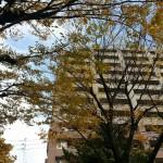 名古屋市中区大須の広告代理店様でSEOの打ち合わせ